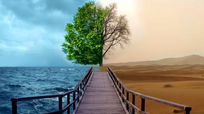 Meio Ambiente - Sec