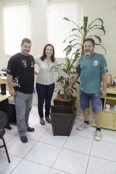 Presente Especial Vasos de Madeira