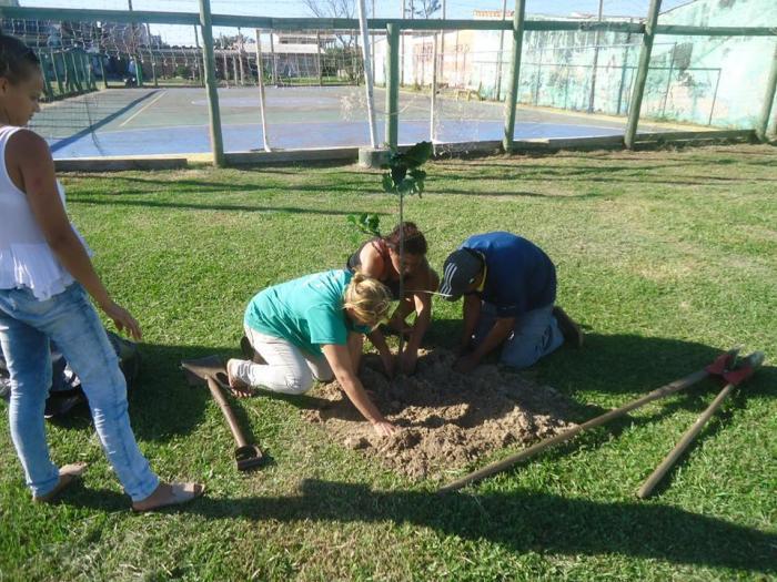 Prefeitura promove plantio de árvores em todo o município